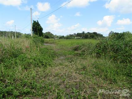 Lots And Land for sale in Ruta 119  km. 9.2 interior, Camuy, PR, 00627