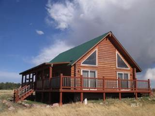 Single Family for sale in 1800 CR RD 310, Westcliffe, CO, 81252