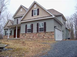 Single Family for rent in 1115 Fillmore, East Stroudsburg, PA, 18301