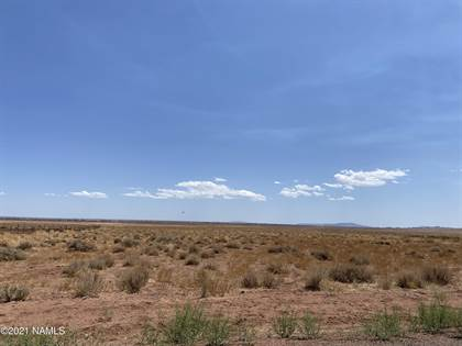 Farm And Agriculture for sale in 743 5 Mountain Road, Winslow - Holbrook, AZ, 86047