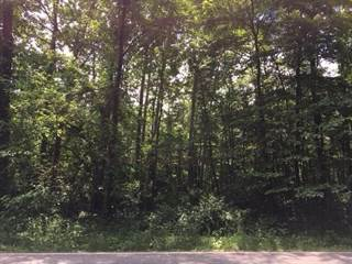 Land for sale in DOUGLAS Road 315, Pleasant Valley, IN, 46561