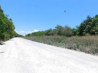Residential Property for sale in (2330) 64 ACRES OF LAND CLOSE TO THE SEA NEAR COROZAL, BELIZE, C.A., Corozal Town, Corozal District