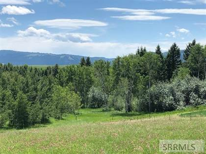 Farm And Agriculture for sale in Tbd Pine Creek Bench Road, Ririe, ID, 83443