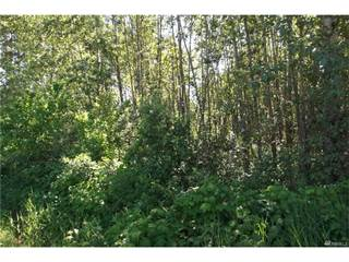 Land for sale in 1129 E Axton Rd, Bellingham, WA, 98226