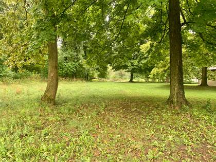 Lots And Land for sale in 20 Cherry Street, Newark, OH, 43055