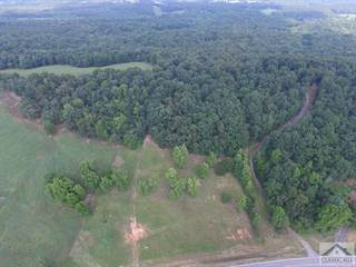 Lots And Land for sale in 00 Wildcat Bridge Road, Royston, GA, 30662