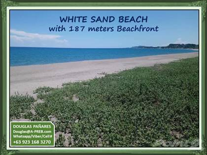 Commercial for sale in For Investor: Affordable White Sand Beach in a Commercial Area of Brgy. Ili Norte, La Union, San Juan, La Union