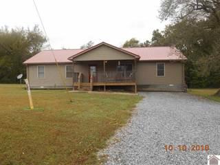 Single Family for sale in 1172 Blackhawk Rd., Cadiz, KY, 42445