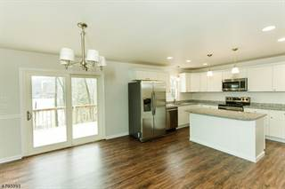 Single Family for sale in 175 W LAKESIDE DR, Liberty, NJ, 07823