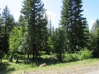 Land for sale in 6859 S BUCKRAIL RD, Harrison, ID, 83833