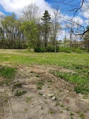 Land for sale in 565 N 4th Street, Greater Westwood, MI, 49009