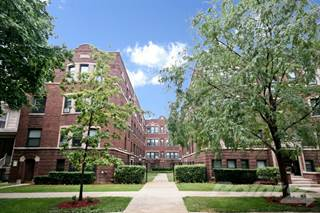 Apartment for rent in 5552-60 N. Lakewood Ave. - Studio, Chicago, IL, 60640
