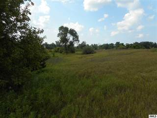 Land for sale in 13651 SHANNON DR, Cement City, MI, 49233