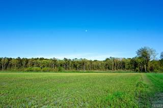 Farm And Agriculture for sale in 1232 Macedonia Road, Edenton, NC, 27932