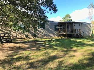 Residential Property for sale in 202 CR 4009, New Boston, TX, 75570