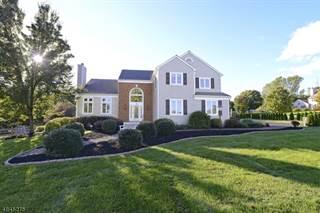 Single Family for sale in 300 MEADOW RUN, Greater Greenwich, NJ, 08886