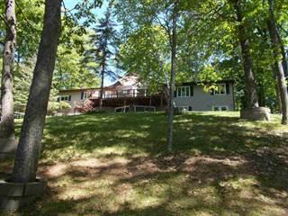 Single Family for sale in W8855 W Lakeview, Iron Mountain, MI, 49801