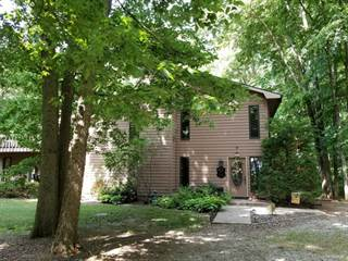 Single Family for sale in 6182 North 900 East Road, Funks Grove, IL, 61772