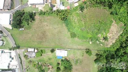Lots And Land for sale in Bo. Maguayo, Sector Santa Rosa, Dorado PR 00646, Dorado, PR