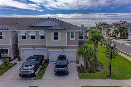 Residential Property for sale in 1002 MANGO COURT, Oldsmar, FL, 34677