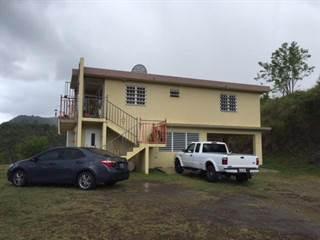 Single Family for sale in KM 2.3 CARRETERA 553, SECTOR EL ORTIZ, Coamo, PR, 00769