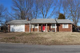Single Family for sale in 251 West Washington Street, Hecker, IL, 62248