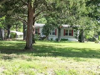 Single Family for sale in 1126 Hollercamp Road, Farmington, MO, 63640