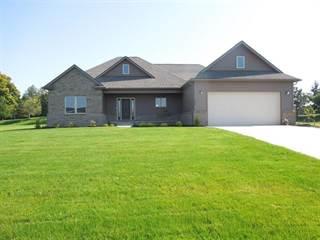 Single Family for sale in 4586 Emerald Valley Loop, Handy, MI, 48836