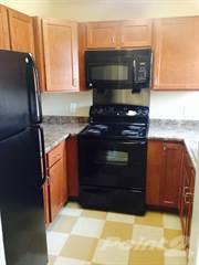 Apartment for rent in Arbor Heights - 1 Bedroom, Arlington, VA, 22204