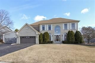 Single Family for sale in 301 Stonebridge Way, Mundelein, IL, 60060