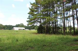 Land for sale in 000 OLD HWY 43, Brandon, MS, 39047