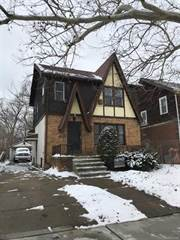 Single Family for sale in 18553 GREELEY Street, Detroit, MI, 48203