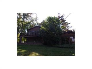 Single Family for sale in 6005 Lakeshore Dr, Andover, OH, 44003