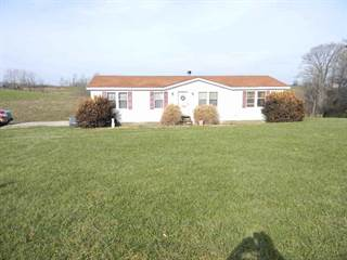 Single Family for sale in 5805 Napoleon Zion Station, Dry Ridge, KY, 41035