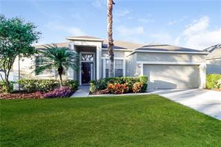 Single Family for sale in 2728 ABBEY GROVE DRIVE, Valrico, FL, 33594