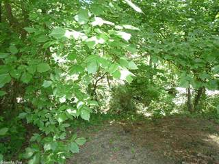 Land for sale in TBD Smokey Hollow Road, Norman, AR, 71960