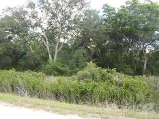 Farm And Agriculture for sale in 0 CR 449, Francitas, TX, 77961