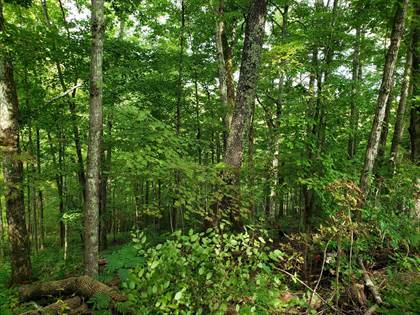 Lots And Land for sale in Roe Lane, Strunk, KY, 42649