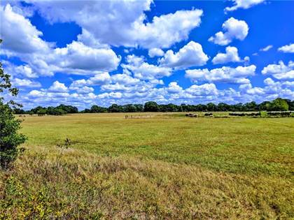 Lots And Land for sale in Tract 3 1940 Farm to Market Road, Franklin, TX, 77856