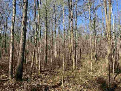Lots And Land for sale in 0 HWY 505, Lawrence, MS, 39336