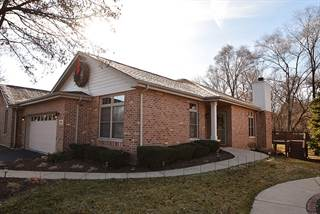 Duplex for sale in 6161 Princeton Lane, Palos Heights, IL, 60463