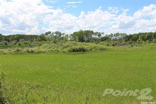 Photo of Brent Bryan Farmland, SK S0A 0T0