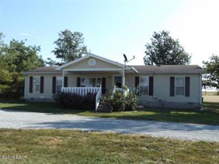 Residential Property for sale in 11639 Aden Road, Wayne City, IL, 62895