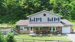 Residential Property for sale in 71 Slatelick Branch Rd, Louisa, KY, 41230