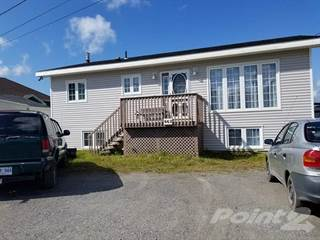 Western Newfoundland Real Estate - Houses for Sale in