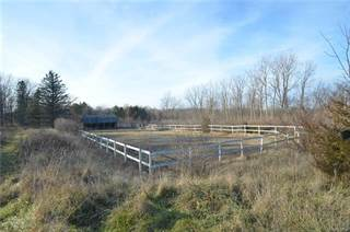 Land for sale in 2725 S Duck Lake Road, Highland Township, MI, 48356