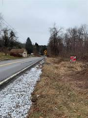 Land for sale in Mt Olivet Rd, Wyoming, PA, 18644