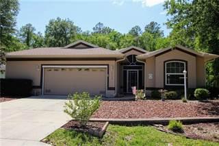 Single Family for sale in 3554 N Chandler Drive, Hernando, FL, 34442