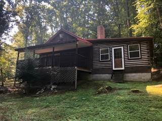Single Family for sale in 341 Lyons Lane, Olive Hill, KY, 41164