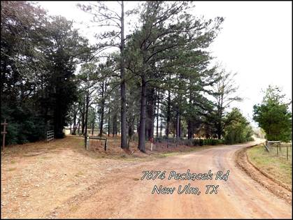 Farm And Agriculture for sale in 7674 Pechacek Road, New Ulm, TX, 78950